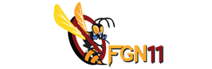FGN 11
